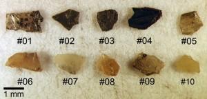 研究に用いたPopigaiクレーター産のダイヤモンド試料