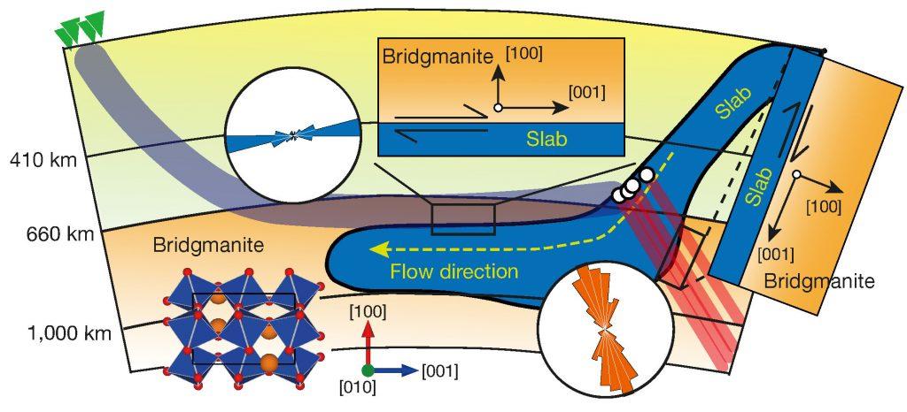 南太平洋のトンガ・ケルマディック地域の地球マントルの断面。沈み込むプレート(青)が下部マントルで横方向に流れている。左下はブリッジマナイトの結晶構造。(転載許可番号 3971590226692, Nature Publishing Group)